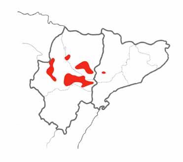 Pin-tailed Sandgrouse map