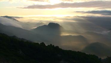 Montroig mist