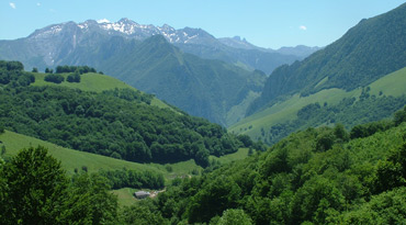 Birding in Navarra: Enjoy birding the Pyrenees of Spain and France