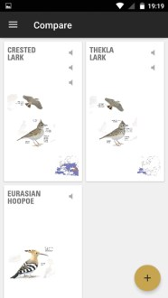 Collins Bird Guide App Compare Feature