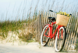 Blog féminin: Birds & Bicycles