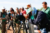 Practicing shorebird ID with scopes at Tuna de Zazas (photo by Lisa Sorenson)