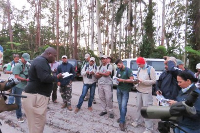 Early morning session: learning how to use the field guide. (photo by Ernesto Reyes)