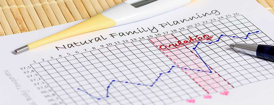 Fertility Awareness Methods (FAM Birth Control) BirthControl