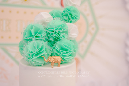 Peach Mint Circus Party cake topper