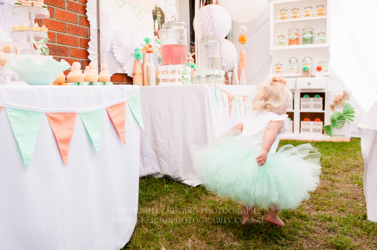 Peach Mint Circus Party table