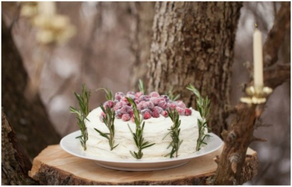 Winter-Wonderland-In-New-England-Party-Cake