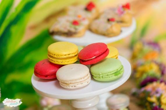 Magical-Fairy-Garden-Oasis-Birthday-Macarons