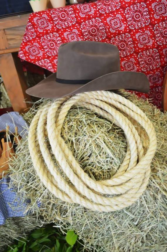 Farm-Adventure-Birthday-Party-Rope