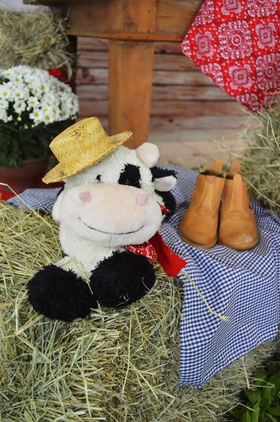 Farm-Adventure-Birthday-Party-Stuffed-Cow