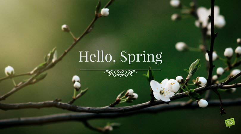 Change Is Coming Quotes Wallpaper Quot Hello Spring Quot Quotes