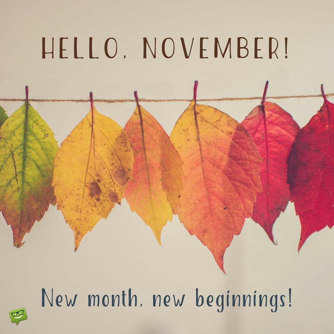 Pretty Fall Desktop Wallpaper Hello November Quotes For The Month Of Gratitude