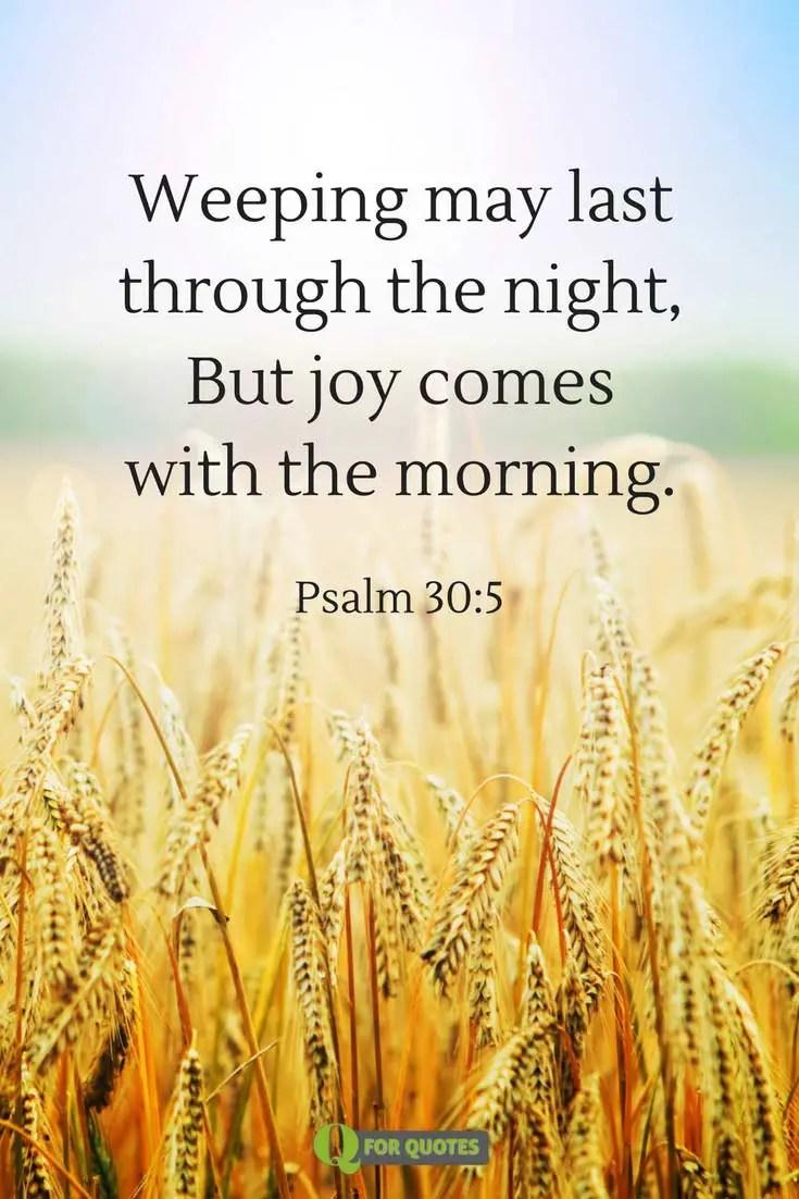 Fullsize Of Scriptures About Joy