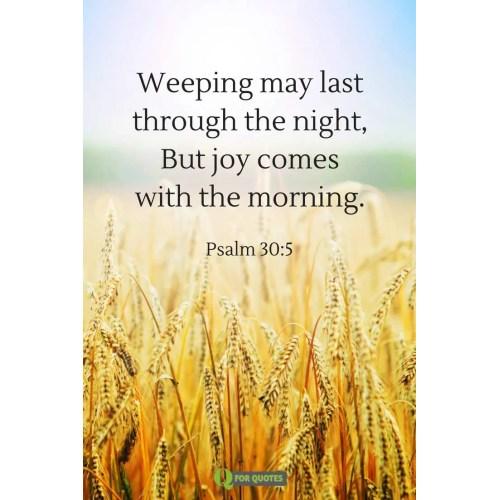 Medium Crop Of Scriptures About Joy