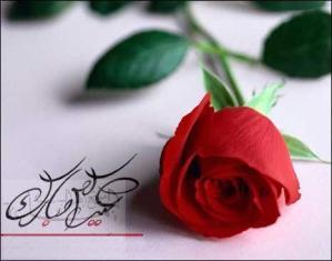 Red rose eid mubarik cards 2013