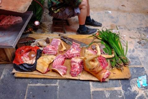 frisches Hundefleisch