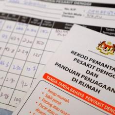 Diagnose: Dengue Fieber!