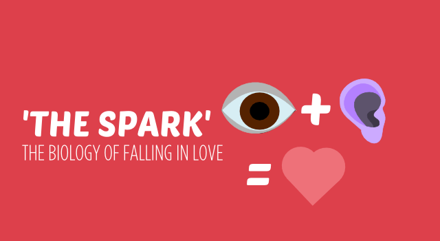 BISH THE SPARK the biology of falling in love header