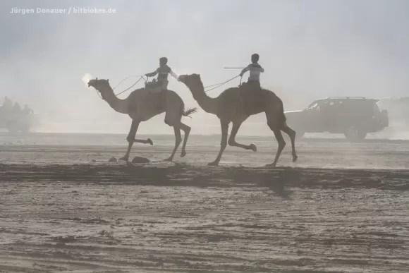 Beim Kamelrennen kann ich mich mit anderen Spielsachen richtig austoben :)