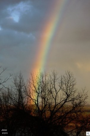Rainbow over riverL
