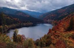 Parcul Național Făgăraș va deveni Yellowstone-ul Europei