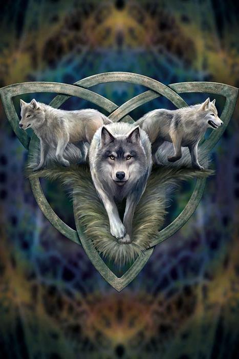 India Wallpaper 3d Hd Anne Stokes Fantasy Gru 223 Karte Wolf Trio 2 99