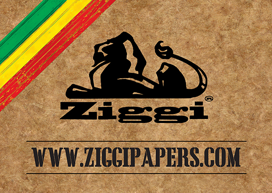 Zigi_logo_flag