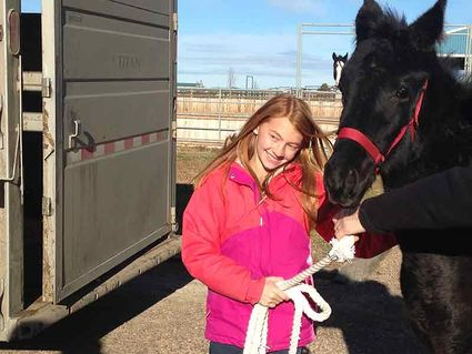 Jade Cecrle\u0027s winning essay with \u0027Girl meets horse, love at first