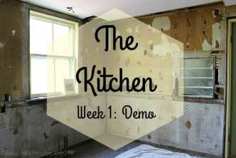 Lowe's Kitchen Remodel Process - Demo