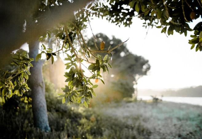 Blanccoco_Photographe_NewZealand_landscape-72