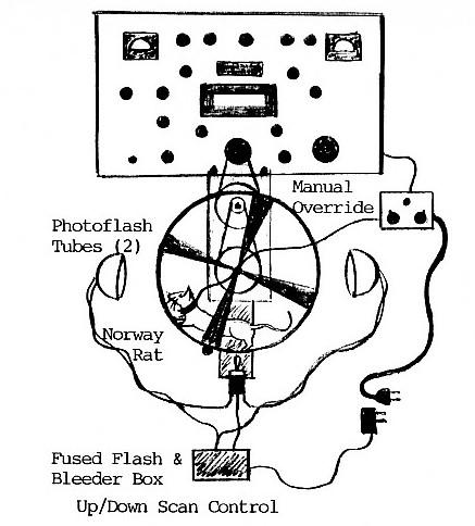 nhra fuel pump relay wiring diagram