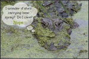 Inside an alligator's mind....