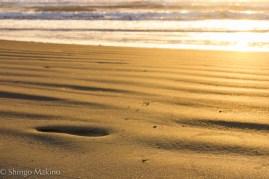 sea sunrise 朝日 海 砂浜