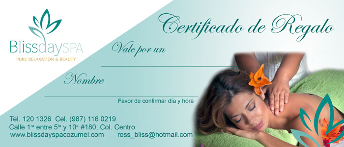 Bliss Day Spa Pure Relaxation and Beauty