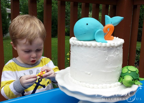 Splash Bash Cake