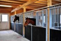Pferdestall nach Ma kaufen / bauen mit Blockhaus 24