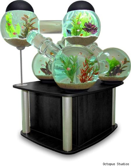 29 Crazy and Unique Fish Tanks