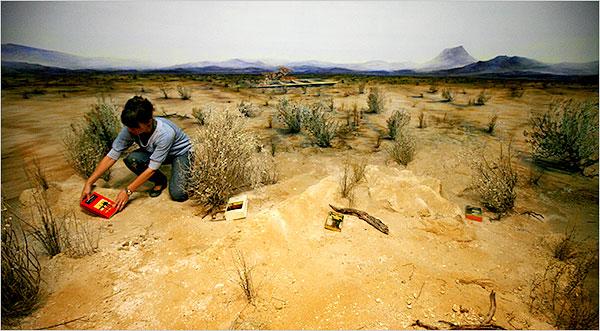 Un ejemplar de Los detectives salvajes en el desierto de Sonora.