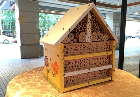 Fairmont bee pollinator