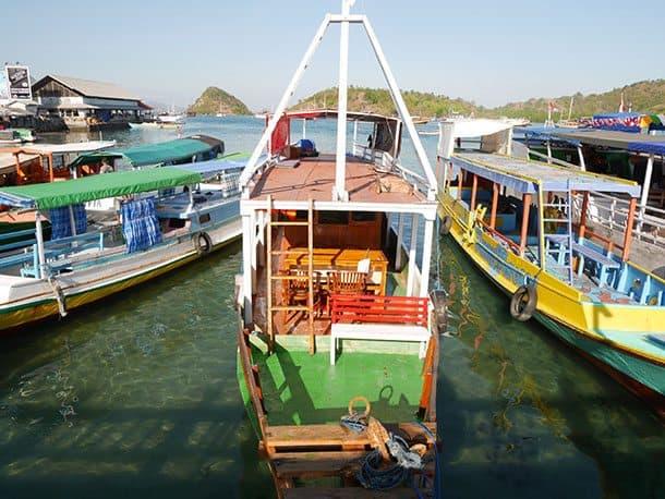 Boats to go Komodo dragon watching