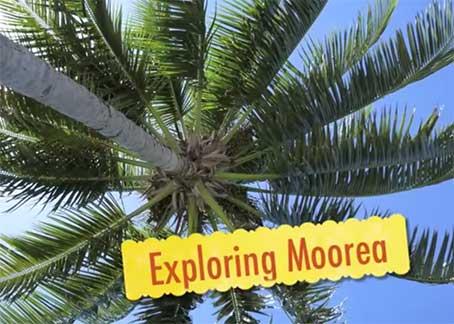 Explore Moorea Tahiti