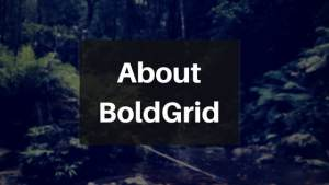 What is BoldGrid?