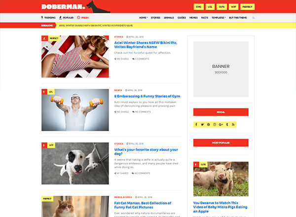 Best WordPress Blog Themes