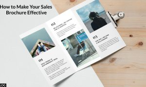 How to Make Your Sales Brochure Effective?