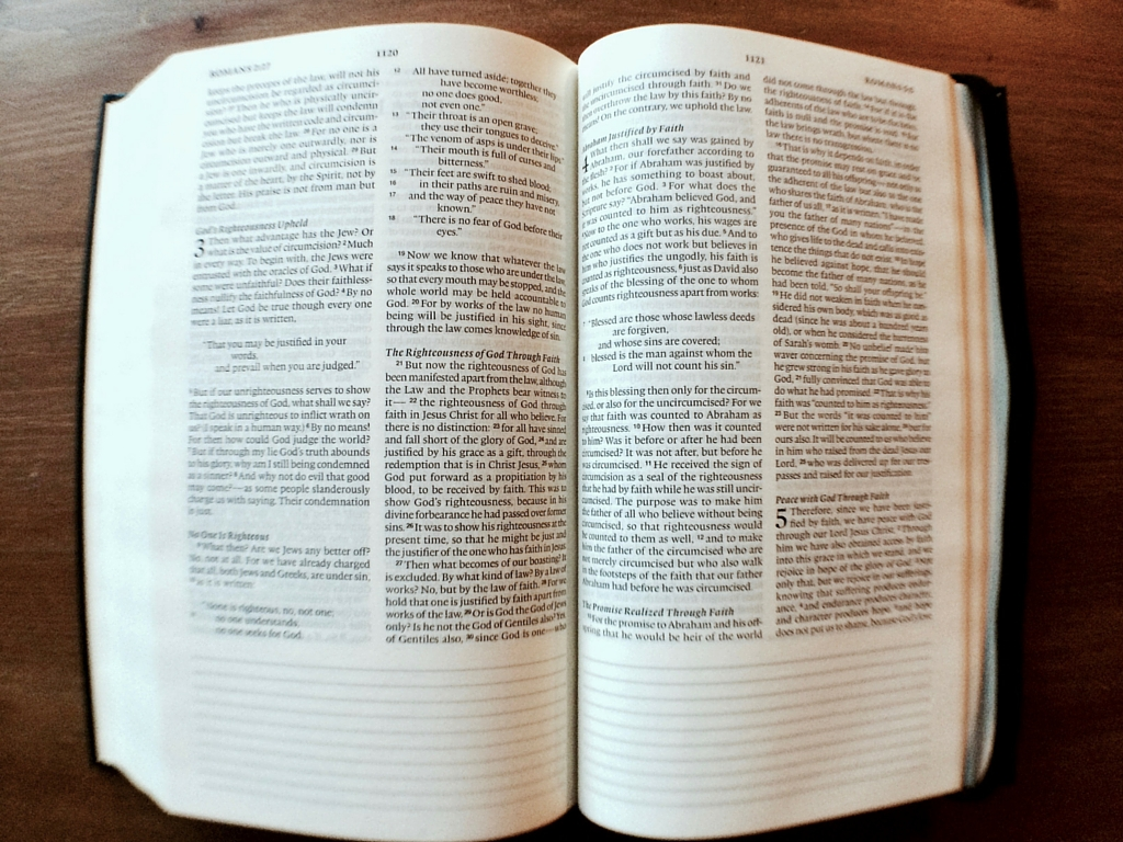 esv bible reading plan pdf