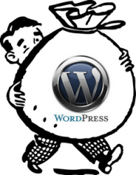 Earn Money Using WordPress
