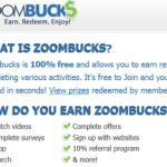 a Review of ZoomBucks.com