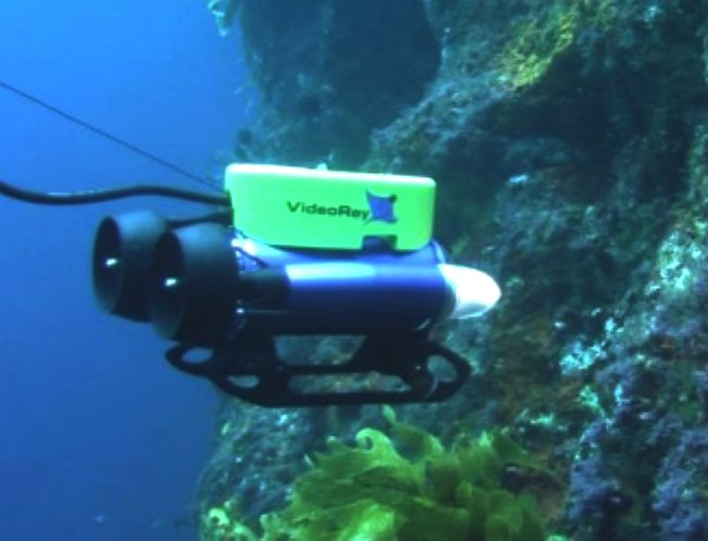 ROVs are remote controlled underwater vehicles They are usually - marine biologist job description