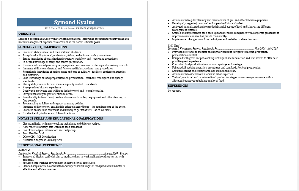 free resume template layouts professional resumes example online