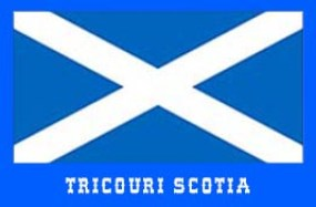 steag scotia
